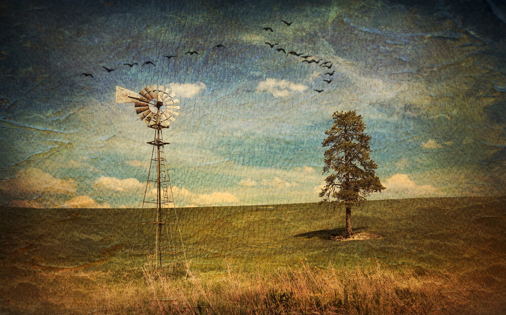 Windmills and Lone Trees are what the Palouse is famous for.
