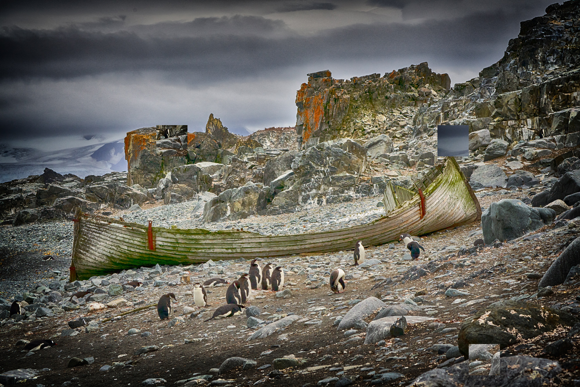 Old whale boat and penguins
